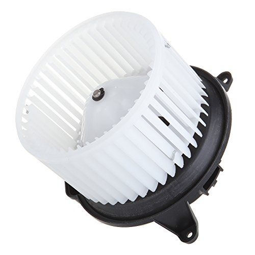 wer Motor ABS w/Fan Cage Air Conditioning HVAC fit for 2003-2006 fit ford Expedition/2004-2008 fit ford F-150/2006-2008 Lincoln Mark LT/2003-2006 Lincoln Navigator ()