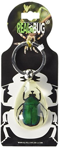 REALBUG Green Chafer Beetle Tear Drop Glow in The Dark Key Chain