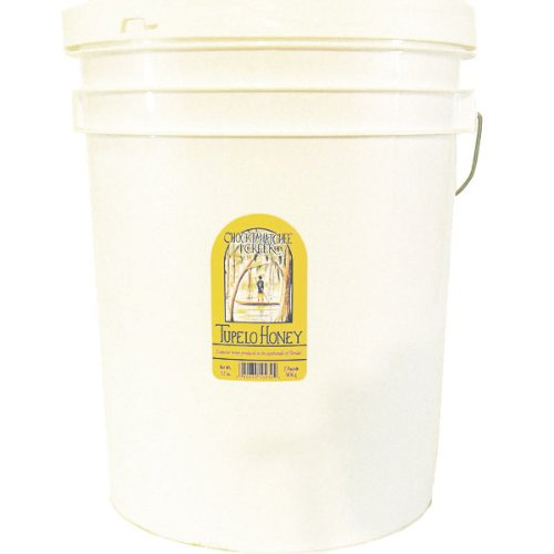 Tupelo Honey Bulk 5 Gallon Plastic Bucket - 60 lbs Premium Grade A Beekeepers Honey from Apalachicola River Basin by Sleeping Bear Farms (Image #2)