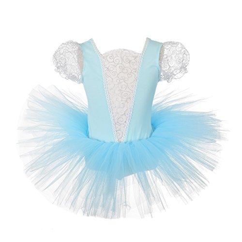 Dressy Daisy Girls' Princess Cinderella Ballet Tutu Dance Costume Leotard Fairy Dress Size 4-5
