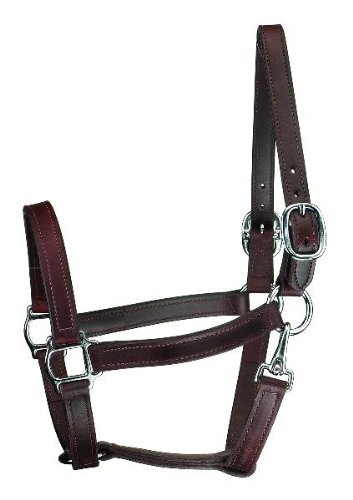 Perri's Horse Track Style Leather Turnout Halter with Snap, ()