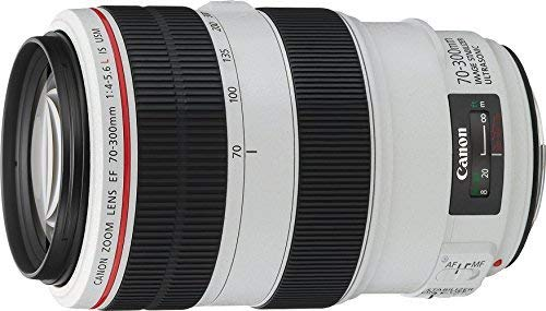 Canon EF 70-300mm f/4-5.6L is USM, 4426B005AA - International Version (No Warranty)