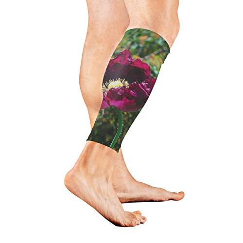 Calf Sleeve Grape Poppy Seeds Protective Guard for Men Women - Basketball Football Run (1 - Elastic Guard Seed
