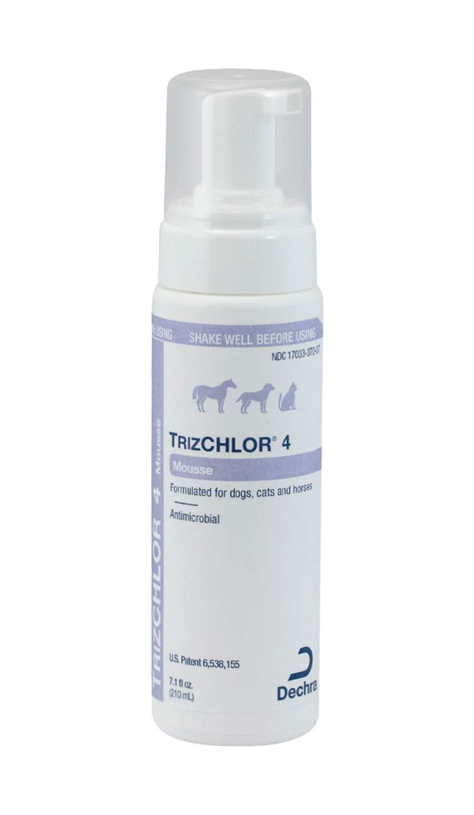 Dechra 192959807752 TrizCHLOR 4 Mousse for Cats and Dogs 7.1 oz by Dechra