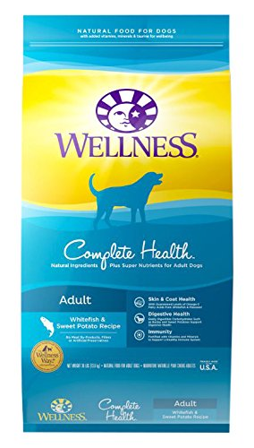 wellness-complete-health-natural-dry-dog-food-whitefish-sweet-potato-30-pound-bag