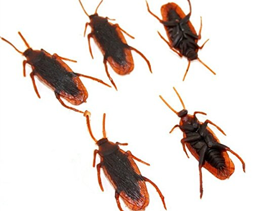 50PCS Fake Roaches Prank Novelty Cockroach Bugs Look Real Halloween Prop Decoration April Fools' Day Prop (Halloween Real)