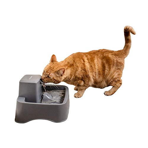 PetSafe Drinkwell Cat and Dog Water Fountain - Platinum, 1/2 or 1 Gallon Pet Drinking Fountain - 64 oz, 128 oz or 168 oz
