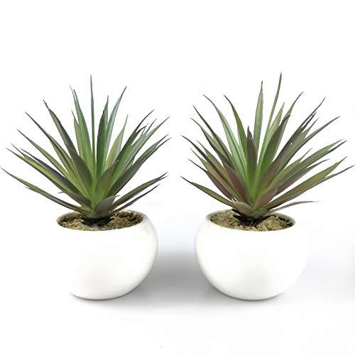 Tuokor Small Artificial Plants in Ceramic Pots, Faux Greenery 2 pcs Set 3.5