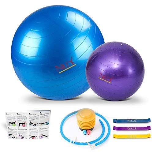 Yoga and Pilates Exercise Ball – 2 Pack Fitness Balls for Home Workouts – 65 cm & 30 cm Big & Small Yoga Balls Set – Comes with 3 Elastic Stretch Bands – Perfect for Stability , Stretching and