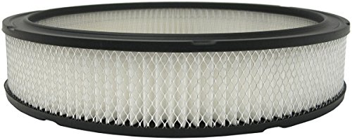 Luber-finer AF50A Heavy Duty Air Filter