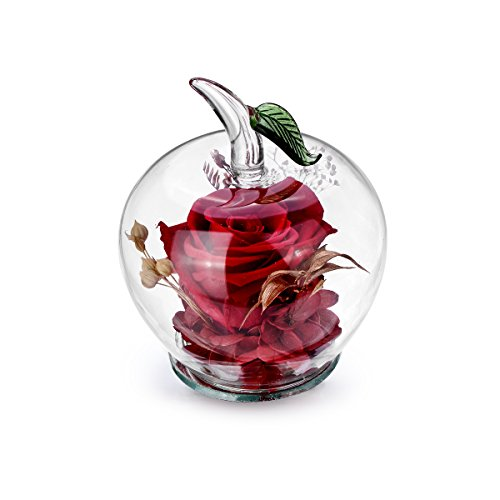 Glass Apples (DeFancy Handmade Preserved Flowers Rose Decor with Apple-shaped Glass-Best Gift for Valentine's Day,Mother's Day,Birthday (Red))