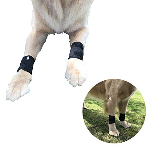 NEPPT Dog Braces Compression Wrap Sleeve for Elbow Ankle Canine Brace Small Dogs Front Leg Knee Heal Protector Support Joint Wound Care Neoprene Sleeve Sprain Stability Arthritis Help Vet Medical(S)
