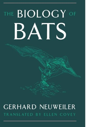 Bat Species (Biology of Bats)