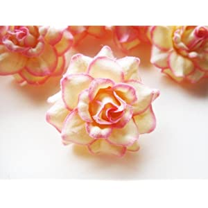 "(100) Silk Cream Pink Edge Roses Flower Head - 1.75"" - Artificial Flowers Heads Fabric Floral Supplies Wholesale Lot for Wedding Flowers Accessories Make Bridal Hair Clips Headbands Dress 4"