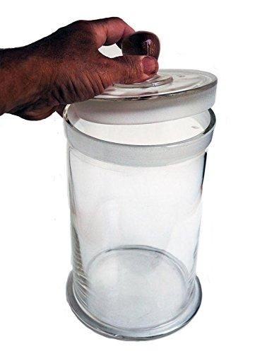 Glass Specimen Jar, 240 x 150mm with lid