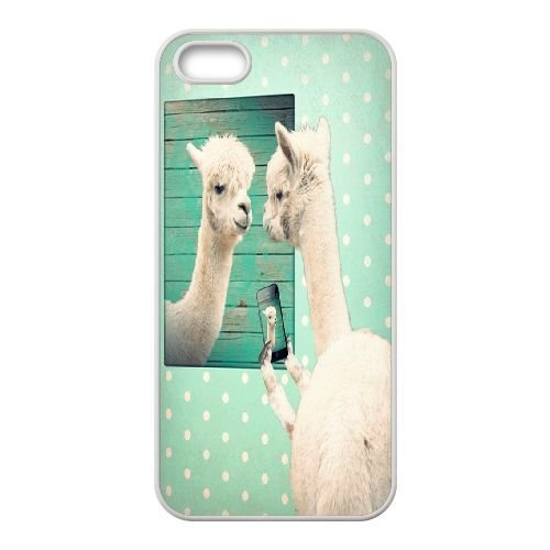 new style 9f733 ab4cd Amazon.com: Custom Llama Phone Case for iPhone 5,iPhone 5S, Llama ...