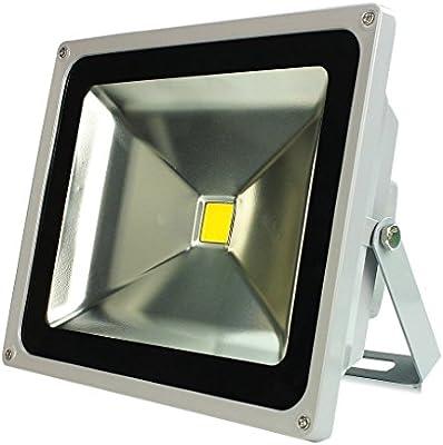 Tanli 20W Blanco Frío Luz Proyector LED Foco proyector de Luz ...