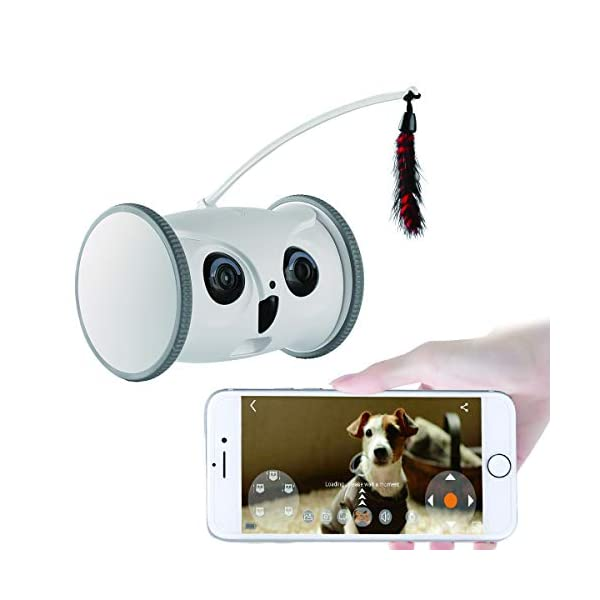 SKYMEE Owl Robot, 1080 FHD Pet Camera Treat Dispenser Interactive Toy for Dogs Cats Remote App Control (Only 2.4G WiFi)