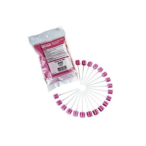 Toothette Individual Oral Swab Bx/250 Mint