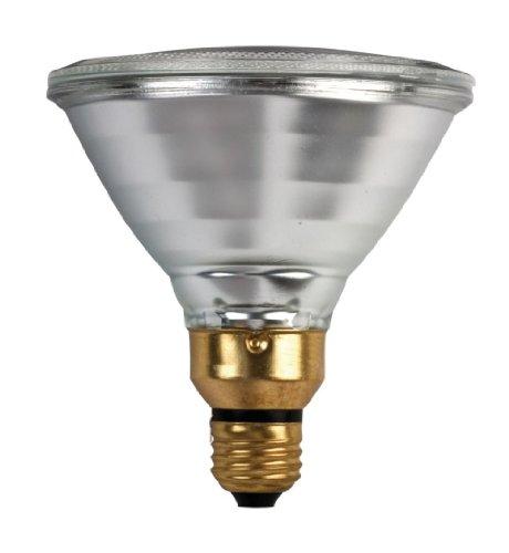 Par38 90w Halogen Lamp (Philips 2 Bulb Pack 90W Indoor/Outdoor Halogen Flood Light Medium Base)