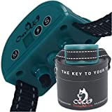 Bark Collar |Bark Collar Small Dog | Anti Bark Collar | Dog Shock Collars | Dog Barking Collar | No Bark | Shock Collar for Small Dogs 5 15lbs | Stop Dogs from Barking | Adjustable Shock Collar