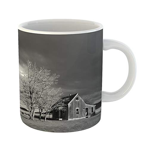Emvency Coffee Tea Mug Gift 11 Ounces Funny Ceramic Abandoned Homestead Near Culver in Central Oregon on Stormy Winter Day Gifts For Family Friends Coworkers Boss Mug