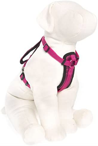 by Barker Brands Inc. Kong Comfort Padded Chest Plate Dog Harness (Large Pink)