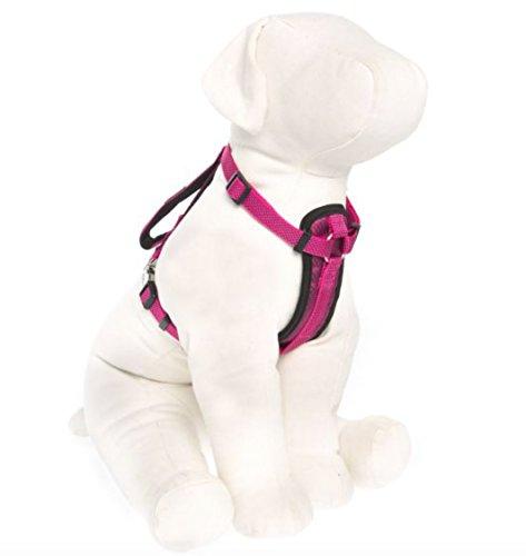 pink padded dog harness - 6