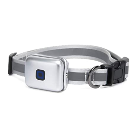 ZDY Mascota Collar Mini Localizador GPS para Perros Y Gatos ...