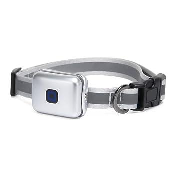 ZHENGDY Mascota Collar Mini Localizador GPS, Localizador Anti-Perdida Anti-Robo De Dispositivos para Perros Y Gatos,Big-Silver: Amazon.es: Hogar