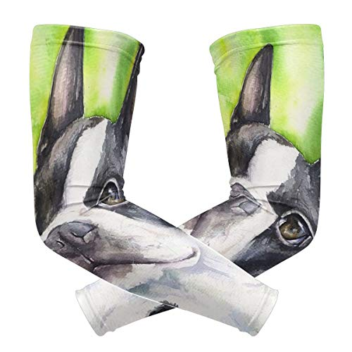 Pineapple Ladder Green Cute French Bulldog Polyester 1 Pair Protection Cooling Or Warmer Arm Sleeves for Men Women Kids Sunblock Protective Gloves Running Golf Cycling Driving