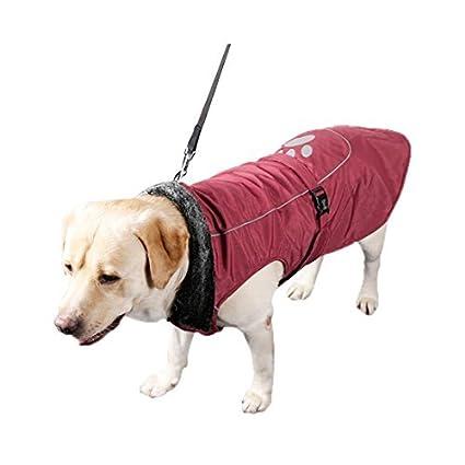 eDealMax reflectantes impermeables ropa de Abrigo Chaqueta del Chaleco del perro Suave capa del perro Caliente