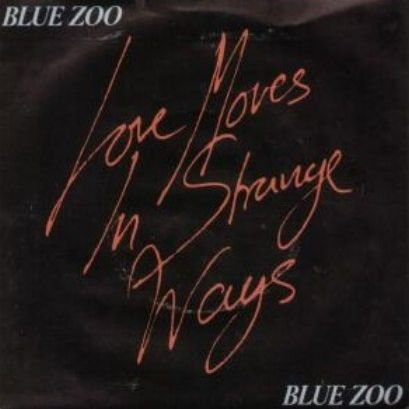 Zoo Magnet - Blue Zoo - Love Moves In