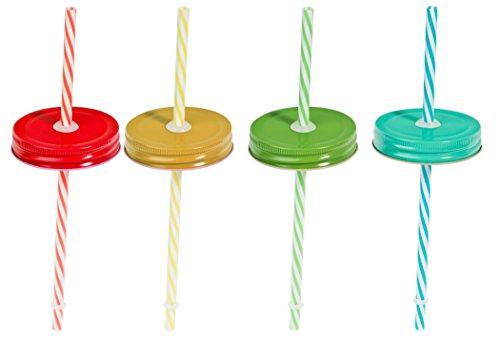 Set of Four (4) Regular Mouth Mason Jar Straw Lids with Straws (Solid) -