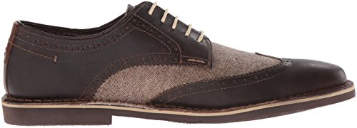 Steve Madden Mens Lookus Oxford Brown/Multi