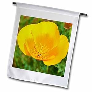 Patricia Sanders Flowers - Pretty Spring Orange Poppy Flower- Floral Photography - 18 x 27 inch Garden Flag (fl_44011_2)