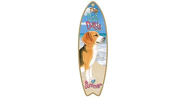 (sjt21704) Beagle Perro tabla de surf con texto en inglés - Medidas 5