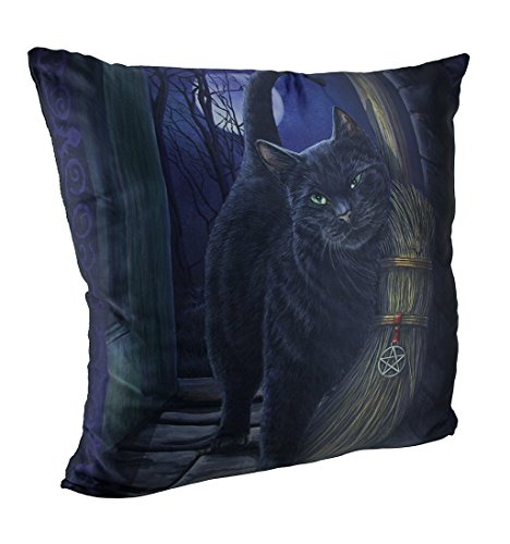 Zeckos Lisa Parker's A Brush with Magick Black Cat and Broom Throw Pillow 20 Inch