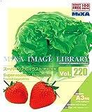 MIXA Image Library Vol.220 スーパーリアルイラスト 野菜・果実