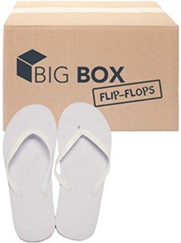 DDI Wholesale Women's Basic Flip Flops -