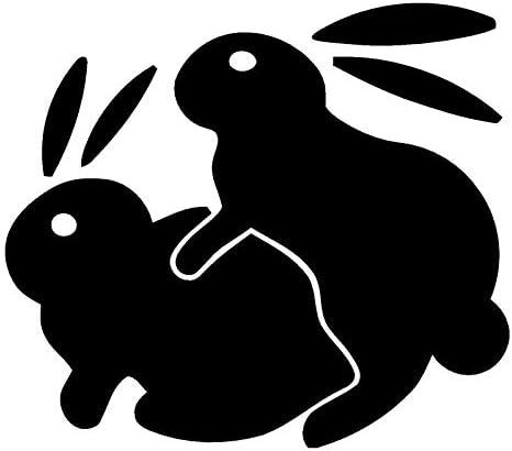 ZHOUMIYU Pegatinas Reflectantes para El Coche 14 * 12 3Cm Bunny Sex Chismes Estilo De Coche Divertidas Calcomanías para Automóviles Y Accesorios De Apliques De Color Negro 1773: Amazon.es: Coche y moto