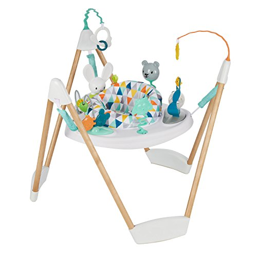 10 Best Exersaucer Babies