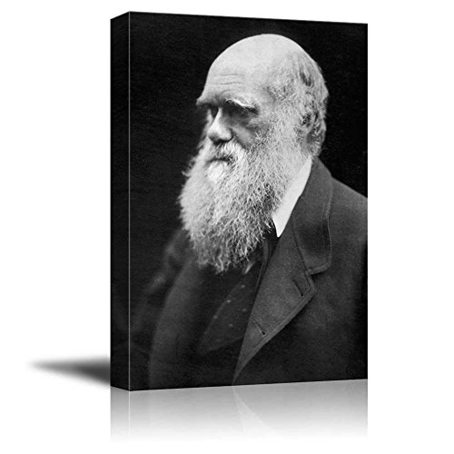 Portrait of Charles Darwin Inspirational Famous People Series