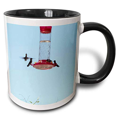3dRose Jos Fauxtographee- Hummingbirds at Feeder - Four tiny hummingbirds at oen feeder on a blue sky - 15oz Two-Tone Black Mug (mug_293685_9) (15 Ounce Hummingbird Feeder)