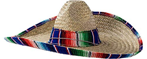 Rubie's Sombrero with Rainbow Serape Edge And Band, Multicolored, One Size -