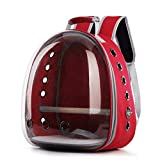 Lucky Youth Bird Carrier Backpack,Bubble Bird Travel Carrier Backpack with Stainless Steel Tray and Standing Perch (Red)
