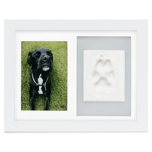 Paw Prints Photo (Paw Prints Keepsake Photo Frame by Better World Pets – Holds 4 x 6 inch Picture – Memorial Clay Imprint Kit – For Dogs and Cats – Perfect for Pet Lovers – Wall Mount)