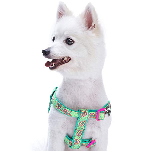 Blueberry Pet 5 Colors Soft & Comfy Step-in Paisley Flower Print Dog Harness, Chest Girth 19.5 - 25.5, Emerald Green, S/M, Adjustable Harnesses for Dogs