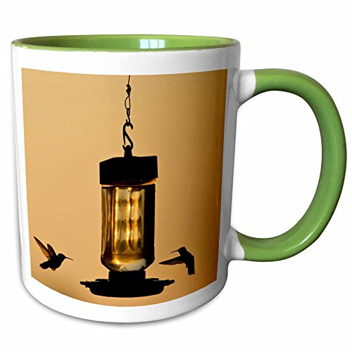 3dRose Danita Delimont - Birds - Hummingbirds at feeder before sunrise, Texas, USA - US44 LDI0954 - Larry Ditto - 15oz Two-Tone Green Mug (mug_147053_12) (15 Ounce Hummingbird Feeder)