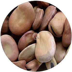 Dried Broad Beans (Fava Beans) - 1Kg
